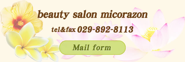 beauty salon micorazon Mail form
